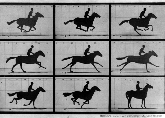 9-FilmStudies-The_Horse_in_Motion.jpg